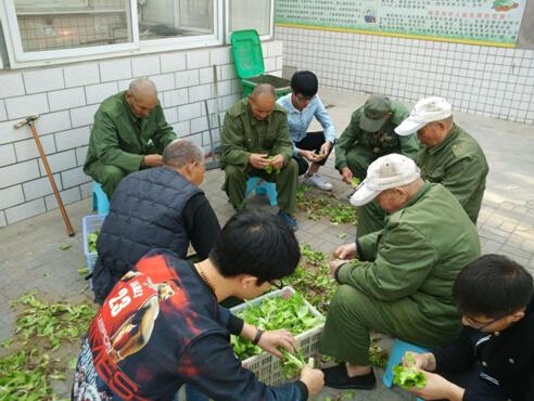 学生党员帮助老人择菜-迎建党95周年,关爱献给老荣军 学生第二党支图片